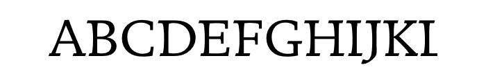 Breughel Com 55 Roman  Скачать бесплатные шрифты