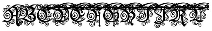 Black And Beauty Curly Alt Caps  Скачать бесплатные шрифты