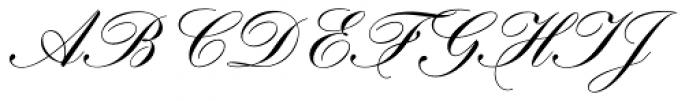 Hogarth Script D  Скачать бесплатные шрифты