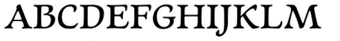Newt Serif Demi  Frei Schriftart Herunterladen